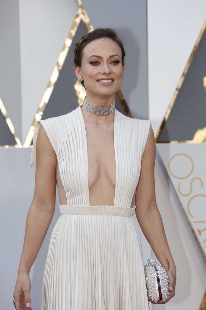 Academy Awards Red Carpet  Fashion
