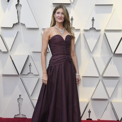 Laura Dern on the Oscars Red Carpet 2019